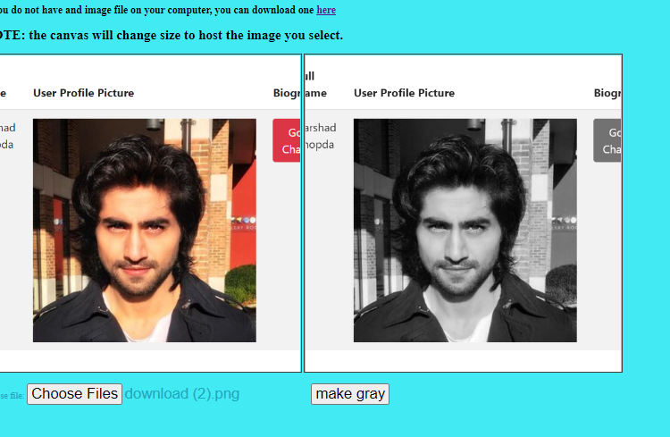 Colored Image to Black White Grayscale Image Converter in Browser Using Javascript (Full Source Code)